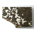 ���ߥ�å����ѥ饵���ȡ���Ŵ��С�139g��Imilac Pallasite Meteorite