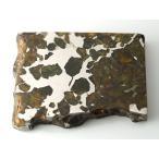 ���ߥ�å����ѥ饵���ȡ���Ŵ��С�154g��Imilac Pallasite Meteorite