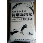 28年産 コシヒカリ玄米5kg コウノトリ育むお米 大粒2.0mm選別 栽培期間中化学肥料、農薬不使用