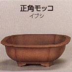 植木鉢 陶器 常滑焼  26T02【和泉屋】正角モッコ盆栽鉢(7.5号_イブシ)
