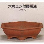 植木鉢 陶器 常滑焼  26T12【和泉屋】六角エン付腰帯浅盆栽鉢(9号_イブシ)