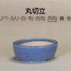 植木鉢 陶器 常滑焼  【鴻陽陶園】丸切立盆栽鉢(7号_ロキン)