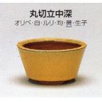 植木鉢 陶器 常滑焼  盆栽鉢・【燿山】丸切立中深(3.5号_黄)