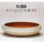 植木鉢 陶器 常滑焼  盆栽鉢・【燿山】丸浅鉢(5号_白)