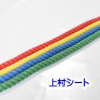 カット販売 エステルカラーロープ 直径10mm カラーロープ