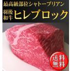 【送料無料】秋田県産羽後和牛ヒレ(シャトーブリアン)ブロック 1kg