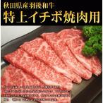 【便利な小分けパック♪希少部位をすこしづつ♪】A4・A5等級羽後和牛イチボ焼肉用 100g
