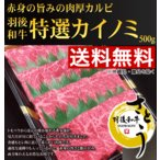 《お歳暮セール》【送料無料】秋田県産 羽後和牛特選カイノミ焼肉用 500g
