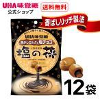 UHA味覚糖 塩の花 焦がしミルクと塩チョコ 12袋 送料無料