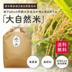 【平成28年度産新米】熊本県【大自然米】完全無農薬・肥料不使用 玄米5kg 送料無料