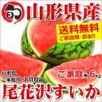水果 - 尾花沢すいか 訳あり 1玉 約6kg すいか スイカ 西瓜 尾花沢スイカ 山形県産 お取り寄せ