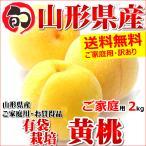 桃 黄桃 2kg ご家庭用 有袋栽培 約5玉〜9玉入り 訳あり わけあり もも 山形県産 お取り寄せ