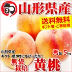 桃 黄桃 5kg 秀品 無袋栽培 約12玉〜18玉入り ギフト 贈り物 もも 果物 フルーツ 山形県産 お取り寄せ
