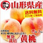 桃 黄桃 3kg 秀品 無袋栽培 約7玉〜11玉入り ギフト 贈り物 もも 果物 フルーツ 山形県産 お取り寄せ
