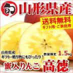 雅虎商城 - 蜜入り りんご 高徳 1.5kg 山形県産 リンゴ こうとく ギフト 贈り物 贈答 お歳暮 山形県 送料無料 お取り寄せ