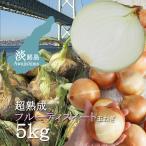 淡路島たまねぎ  超熟成 フルーティスイート玉ねぎ  5kg  M/L/LLサイズ ターザン 有機肥料 低減農薬栽培 産地直送