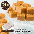 手作り材料キット 焦がしバターのような風味が特徴!ブロンド生チョコ  ラッピング付き 24個分 S094 ココナッツキッス