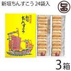 新垣ちんすこう 24袋入り (2個×24袋)×3箱 新垣ちんすこう本舗 沖縄 土産 人気 定番  条件付き送料無料