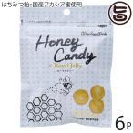 ギフト Honey Candy ローヤルゼリー 25g×6P カルナ 国産アカシア蜜・生ローヤルゼリー使用 着色料・香料不使用 手作りあめ はちみつ飴 あめ玉 送料無料
