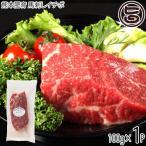 ギフト 熊本肥育 馬刺しイチボ 100g×1P フジチク タレ・生姜付き 熊本県 土産 人気 馬肉 低カロリー 低脂質 ご自宅用に 贈り物に 送料無料