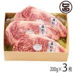 ギフト 熊本産黒毛和牛 藤彩牛 A4〜A5 サーロインステーキ 200g×3枚 フジチク  送料無料
