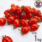 GINZA FARM 高糖度プレミアムトマト 1kg バラ納品 新鮮 高級 甘いとまと 産地直送  条件付き送料無料