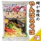 沖縄そば 粉末スープ付 2食入×3袋  送料無料 沖縄 土産 人気 定番