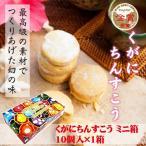 くがにちんすこう ミニ箱 10個入×1箱 くがに菓子本店 沖縄 土産 人気 甘い  送料無料