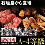 ギフト 石垣牛 A-4等級 限定石垣牛 & あぐー豚 BBQセット 送料無料 沖縄 人気 肉 高級 希少