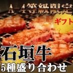 ギフト 石垣牛 A-4等級限定石垣牛5種盛り合わせ 焼肉 BBQセット 送料無料 沖縄 人気 肉 高級 希少