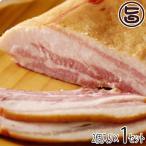 ギフト 南ぬ豚 特選ギフト (手揉みベーコン) ×2セット 沖縄 国産 人気 肉 ギフトセット  送料無料