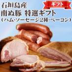 ギフト 南ぬ豚 特選ギフト (ロースハム・ソーセージ・ベーコン) ×各1セット 沖縄 国産 人気 肉 ギフトセット 送料無料