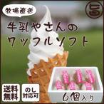 ギフト 牛乳やさんのワッフルソフト 6個入り ソフトクリーム 秋田県 牧場直送 ミルクたっぷり 手焼きワッフルコーン 人気 ギフト ご当地アイス  送料無料