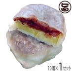いきなり団子 黒あん10個×1 条件付き送料無料 熊本県 九州 復興支援 人気 和菓子 熊本銘菓