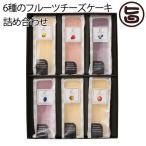 6種のフルーツチーズケーキ詰め合わせ 6種類×各1個 カスターニャ