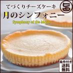 最高級チーズケーキ 月のシンフォニ〜交響曲〜 1ホール(直径12cm・140g) カスターニャ