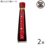 黒にんにく梅ソース 120ml×2本 送料無料 沖縄 健康管理 調味料 人気