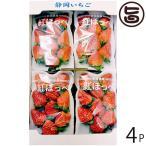 ギフト 静岡県産 こだわり 紅ほっぺ 250g×4P 国産 果物 酸味・甘味のバランスが絶妙 練乳をつけて スムージーやケーキなどに 条件付き送料無料