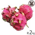 期間限定 ドラゴンフルーツ 2kg(4玉〜6玉) 沖縄 人気 南国フルーツ  条件付き送料無料
