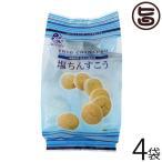 塩ちんすこう ちゃたんの塩入り 15個入×4袋 ナンポー 沖縄 土産 定番 人気 菓子 個包装  送料無料