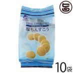 塩ちんすこう ちゃたんの塩入り 15個入×10袋 ナンポー 沖縄 土産 定番 人気 菓子 個包装  条件付き送料無料