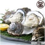 期間限定 隠岐のいわがき 3Lサイズ 5枚入り 3月から6月まで 日本海隠岐活魚倶楽部 ぷりぷり濃厚な岩牡蠣 鮮度抜群 牡蠣メス 軍手 レシピ付 送料無料