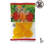 ドライフルーツ マンゴー 140g×1袋 南風堂 沖縄 人気 定番 土産 乾燥果物 トロピカルフルーツ 送料無料