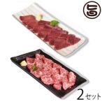 馬刺しセット1(霜降り 約200g・上赤身 約100g)×2セット 熊本県 九州 名物 人気 定番  条件付き送料無料