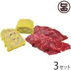 からし蓮根と馬刺しのセット1(馬刺し(赤身)約100g ・ からし蓮根(中)1本)×3セット 熊本県 九州 名物 人気 定番 熊本名物 条件付き送料無料