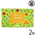 hanaha シークヮーサーマンゴー 12個入×2箱 エーデルワイス沖縄 沖縄 土産 人気 菓子 バターケーキ 個包装 送料無料