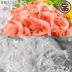 駿河湾産 ぷりぷり 桜えび 40g×2 駿河湾産 ぷりぷり 生しらす 150g×2 おいしい産業 その日の内に -40℃で急速冷凍 条件付き送料無料