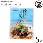 伊江島おっかー自慢のイカ墨じゅーしぃの素 150g×5袋 送料無料 沖縄 人気 定番 ご飯の素 琉球料理