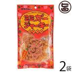 ミミガージャーキー 28g×2袋 送料無料 沖縄 人気 定番 おつまみ 珍味