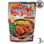 沖縄の味じまん らふてぃ ごぼう入 165g×3袋 送料無料 沖縄 人気 定番 土産 料理